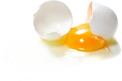 O Egg Cracked All Internal