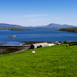 Clew Bay 054