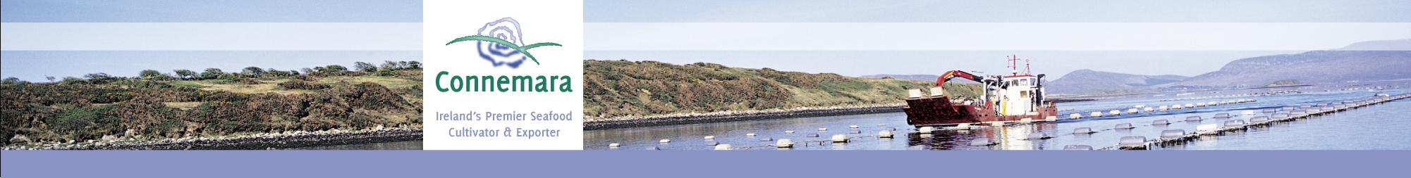 Connemara Blog