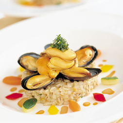 Pine Nut Crested Mussels
