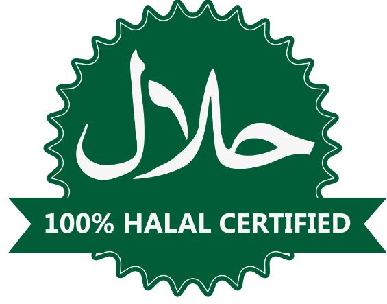 Halal Logo For Epicom Use