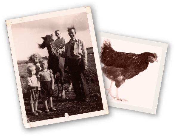 Oegg Family Story