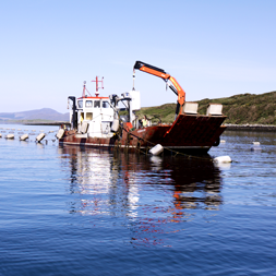 Mussel Farm Fishing Boat